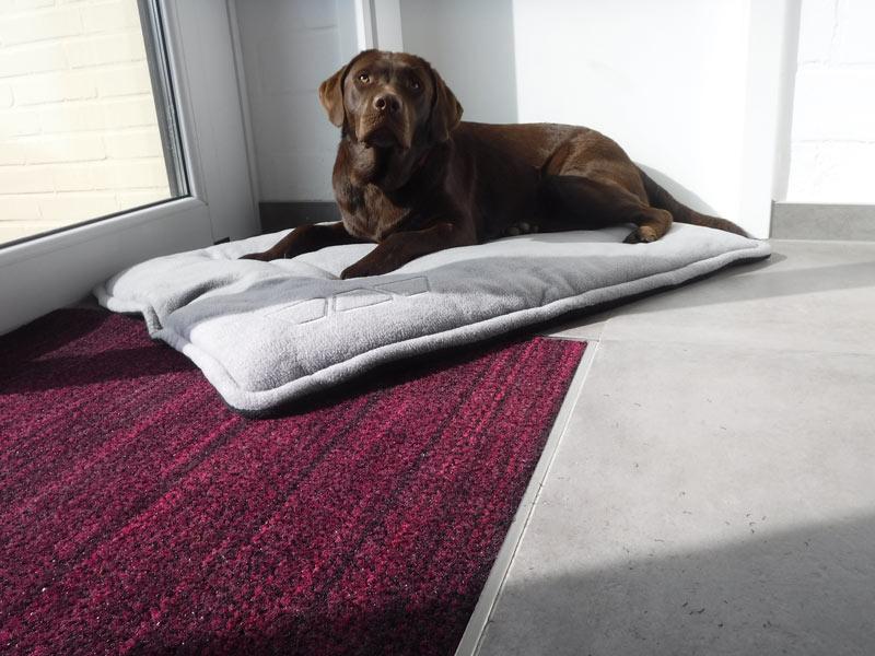 """Darauf """"steht"""" sogar dein Hund: Im Boden eingefasste Sauberlaufmatten in der Größe und Farbe deiner Wahl."""